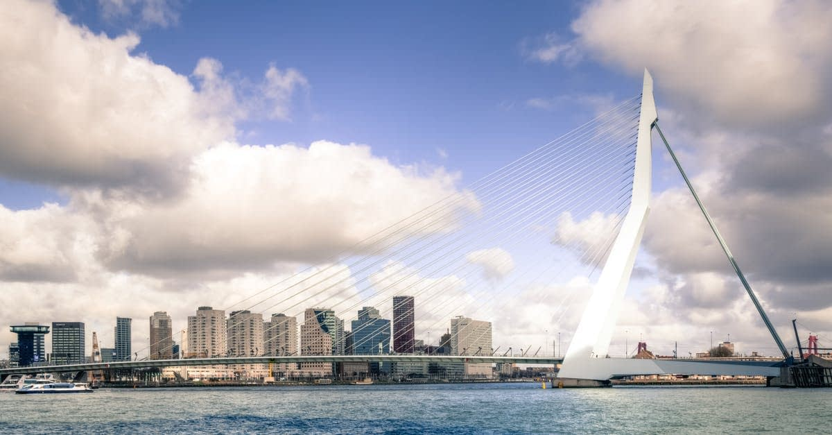 The city's construction sector produced 393,783 tonnes of pulverized concrete, bricks, and other waste – the equivalent of 58 Erasmus Bridges.