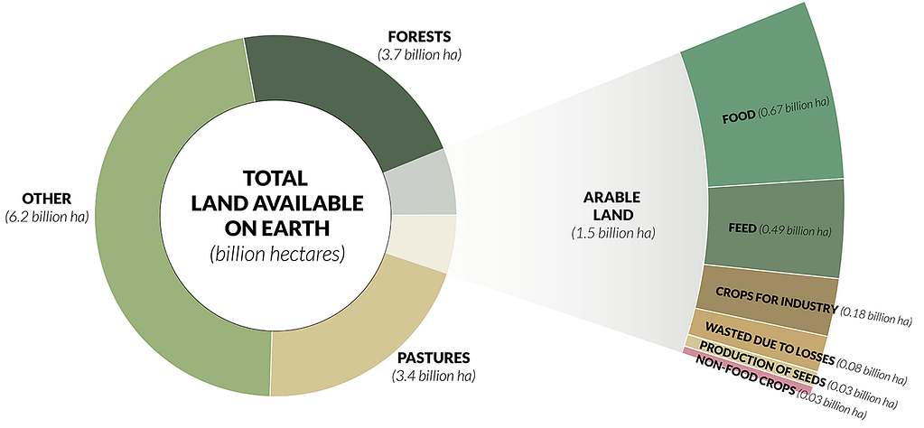 Infographic showing the total available land, how much we are using for agriculture, and in what capacity