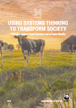 Using Systems Thinking to Transform Society