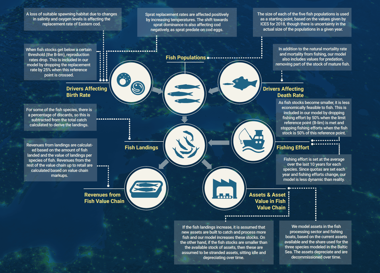 High-Level Overview of the Baltic Port Fisheries Model