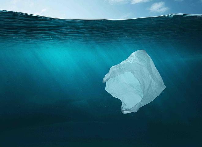 environmental impact of plastic bags