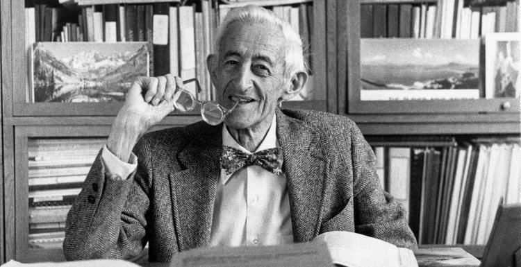 Abel Wolman coined the term urban metabolism