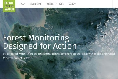 Forest_Monitoring