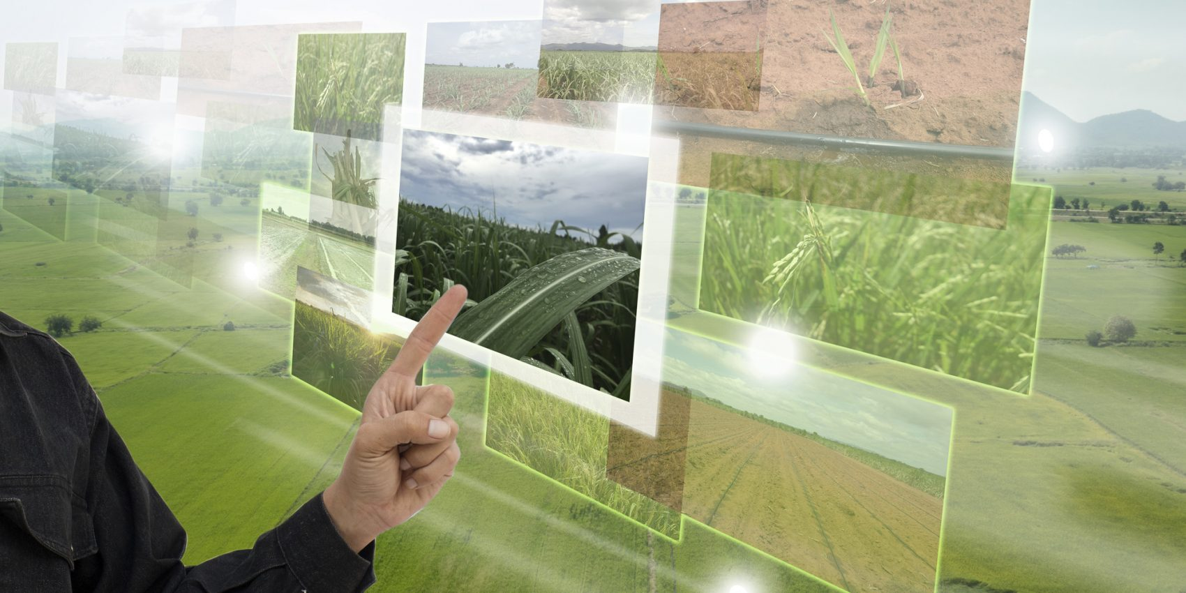 RS1718_Internet of things (agriculture concept), smart agriculture, industrial agriculture. User points out to use broadened reality technology to control, monitor and manage in the farm-lpr