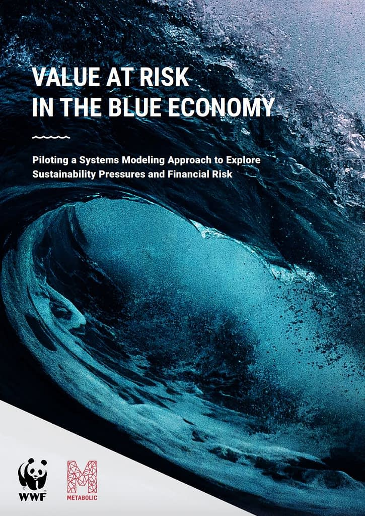 Value at Risk in the Blue Economy