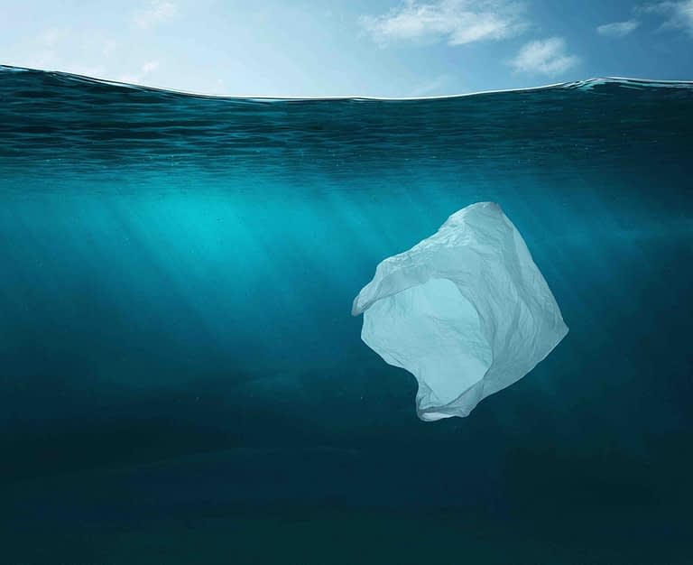 environmental impact of plastic bags