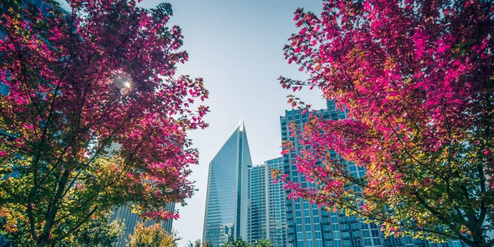 Transitioning to a circular economy could net the city of Charlotte an estimated $2.3 billion in revenue by 2040.