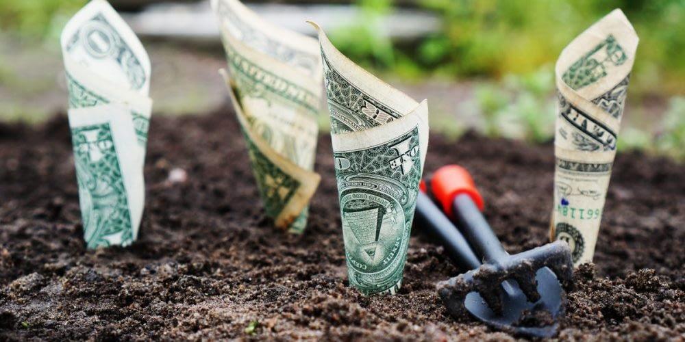 Planting-money-e1539351453573